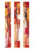 Feuerfeen Prints by Michael Schönpflug