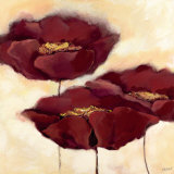 Mohn in Milch II Prints by Elena Filatov