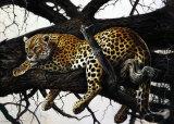 Jaguar Poster par Renato Casaro