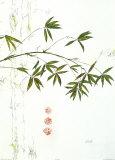Bambuszweig Art by Michael Ferner