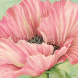 Pink Poppy Flower Head Prints by Lynne Misiewicz