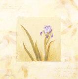 Lilas Composicion IV Posters by  Atenea