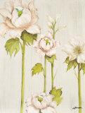Flor Arlequin IV Prints by Luisa Romero