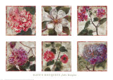 Kaye&#39;s Bouquets Prints by John Douglas