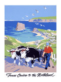 Furness North Land Cruises Giclee Print by Adolph Treidler