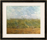 Wheat Field with a Lark Posters by Vincent van Gogh