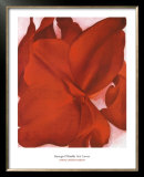 Red Cannas Posters by Georgia O&#39;Keeffe