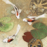 Koi Fest I Collectable Print by Aleah Koury