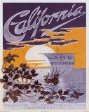 Kaliforniya (California) - Afiş