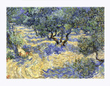 Olive Orchard, c.1889 Giclee Print by Vincent van Gogh