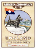 Aberdeen and Commonwealth Line Giclee Print by P. H. Yorke