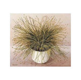 Bare Grass I Posters by Galley 