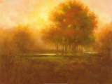 Golden Forest Prints by Jim Mitchell