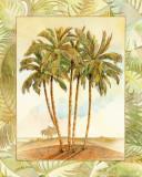 Palm Tree III Prints by Bradley H. Clark