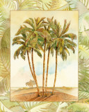 Palm Tree III Art Print by Bradley H. Clark