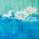 Fleurs d'Azur I Prints by Isabelle Herbert