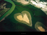 Coeur de Voh Posters by Yann Arthus-Bertrand