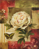 Peony and Butterfly Affiches par Lisa Audit