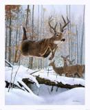 Leaping Deer Poster von Robert Travers