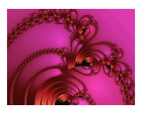 Copper on Pink Photographic Print by Vicky Brago-Mitchell