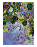 Green Oranges Giclee Print by Ann Tuck