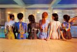 Pink Floyd– Rückenansichten Poster
