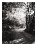 The Road Taken Photographic Print by Jenphotoart