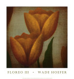 Floreo III Prints by Wade Hoefer