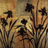 Iris Silhouette II Posters by Erin Lange