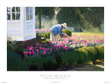 Tulip Garden Prints by Anthony Watkins