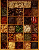 Spices Prints