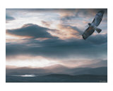 The Flight Photographic Print by Bill Stephens