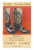 Cowboy Boots, Tony Lama Prints
