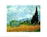 Campo de Trigo Verde com Ciprestes, c.1889 Posters por Vincent van Gogh