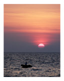 Fishing in Paradise Photographic Print by  Manta Vision
