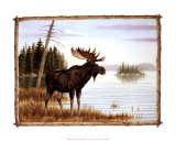 The Mighty Moose Prints by Ron Jenkins