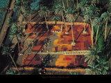 In der Sonne trocknende Datteln in einem Palmenhain Poster von Yann Arthus-Bertrand