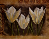 Triple Tulip I Prints by Rumi 