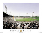 Fenway Park Print by Darryl Vlasak