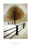 Einsamkeit Kunstdrucke von David Winston