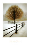 Solitude Print by David Winston