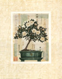 Azalea Bonsai Poster by Gloria Eriksen