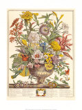 September Prints by Robert Furber