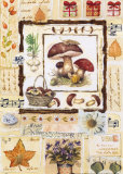 Mushroom Melody Posters by G.p. Mepas