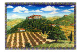 Wine Vinyard Estates Giclee Print by Caroline Haliday