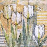 Mariels Tulips III Prints by Eric Barjot