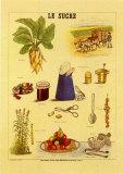 Le Sucre Prints