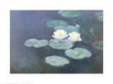 Ninfeas efecto de la tarde Láminas por Claude Monet