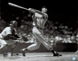 Ted Williams Photo
