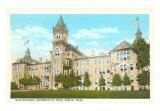 University of Texas Art Print